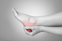 The Plantar Fascia and Heel Pain